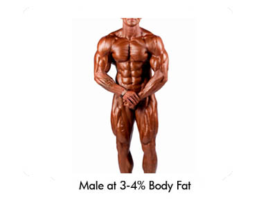Male at 3-4% Body Fat